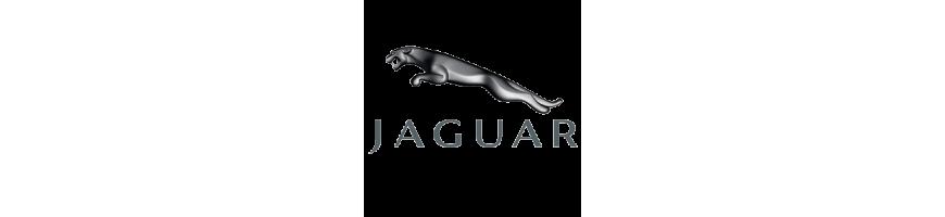 Faisceaux spécifiques pour JAGUAR