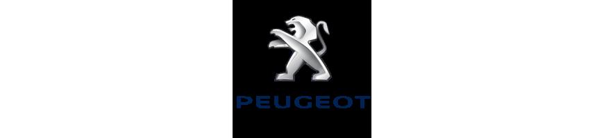Faisceaux spécifiques pour PEUGEOT