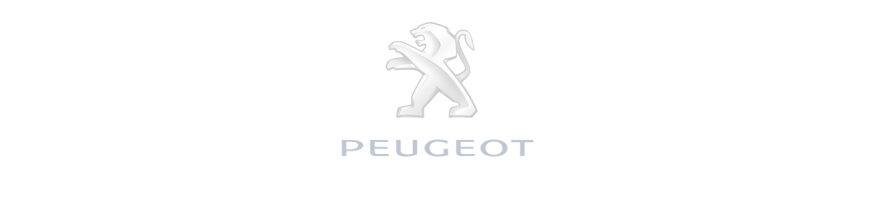 Attache Remorque Peugeot 3008
